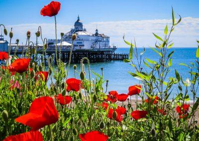 eastbourne-4